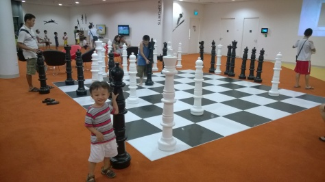 Large chess set and Wii games in the library/rec room