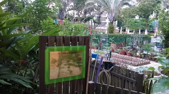 WP_20140928_025 Moulmein community garden